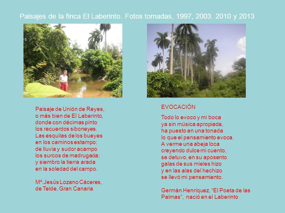 Paisajes de la finca El Laberinto. Fotos tomadas, 1997, 2003
