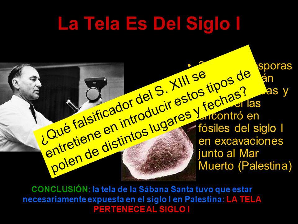 La Tela Es Del Siglo I