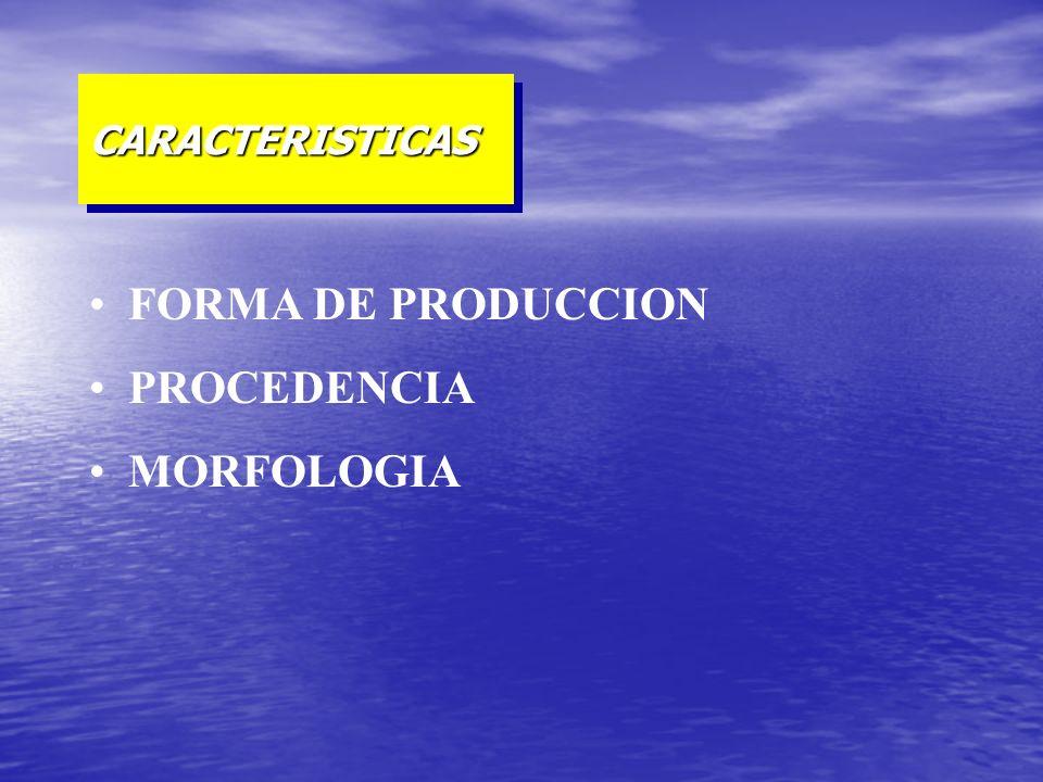 CARACTERISTICAS FORMA DE PRODUCCION PROCEDENCIA MORFOLOGIA