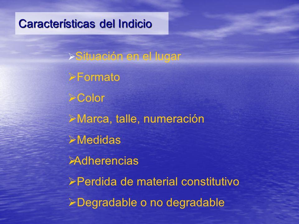 Características del Indicio