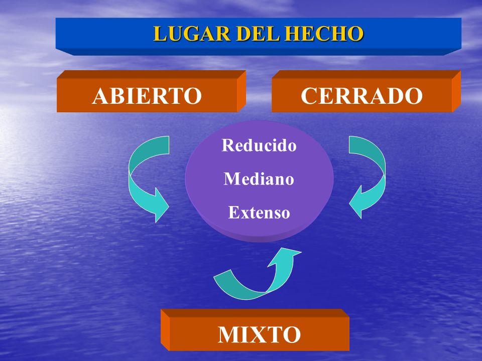 LUGAR DEL HECHO ABIERTO CERRADO Reducido Mediano Extenso MIXTO