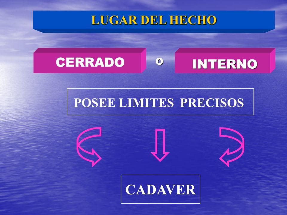 LUGAR DEL HECHO CERRADO O INTERNO POSEE LIMITES PRECISOS CADAVER