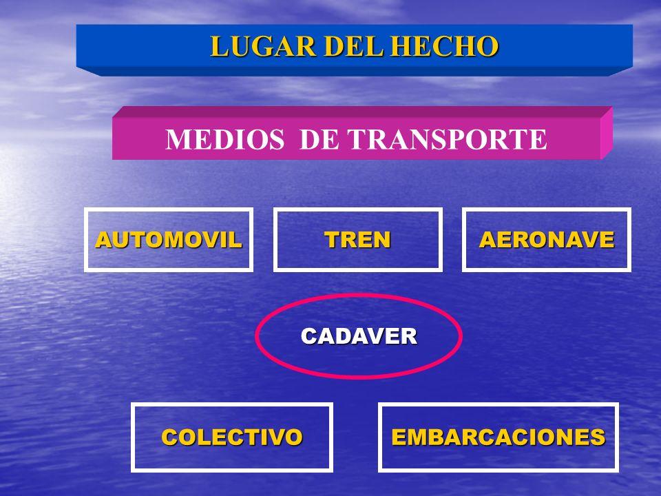 LUGAR DEL HECHO MEDIOS DE TRANSPORTE