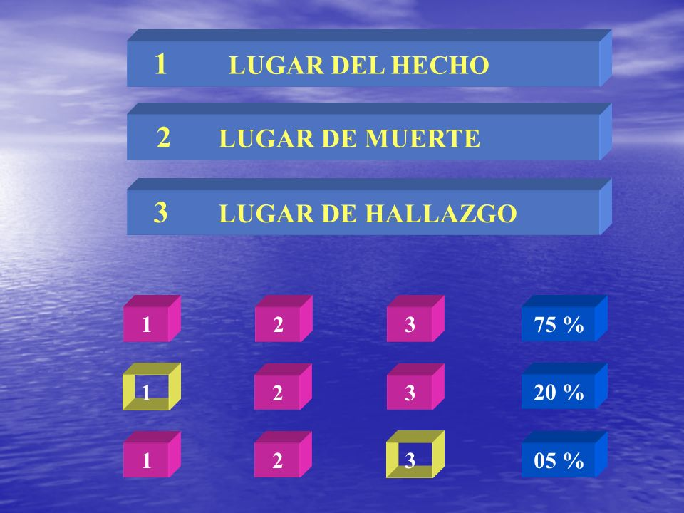 2 LUGAR DE MUERTE 1 LUGAR DEL HECHO 3 LUGAR DE HALLAZGO 1 2 3 75 % 1 2