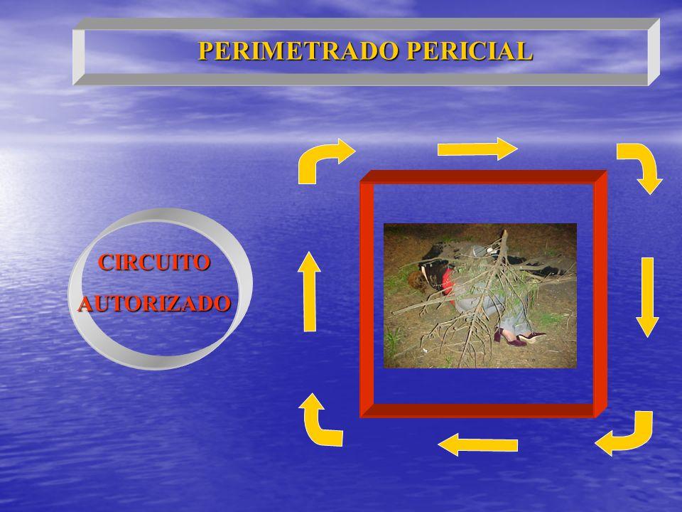 PERIMETRADO PERICIAL CIRCUITO AUTORIZADO