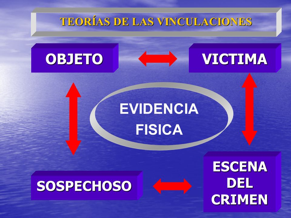 TEORÍAS DE LAS VINCULACIONES