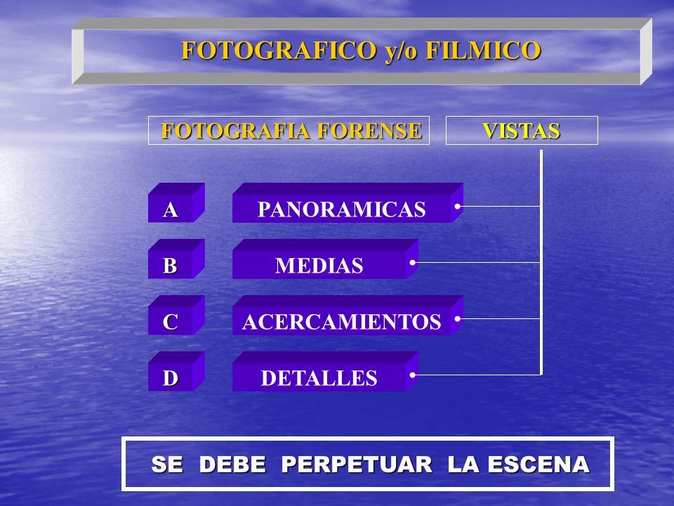 FOTOGRAFICO y/o FILMICO