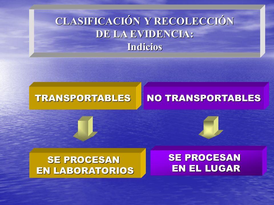 CLASIFICACIÓN Y RECOLECCIÓN