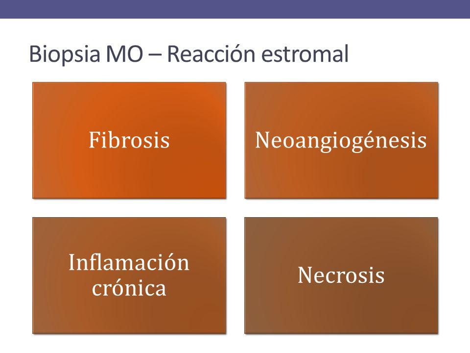 Biopsia MO – Reacción estromal