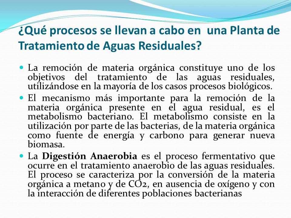 ¿Qué procesos se llevan a cabo en una Planta de Tratamiento de Aguas Residuales