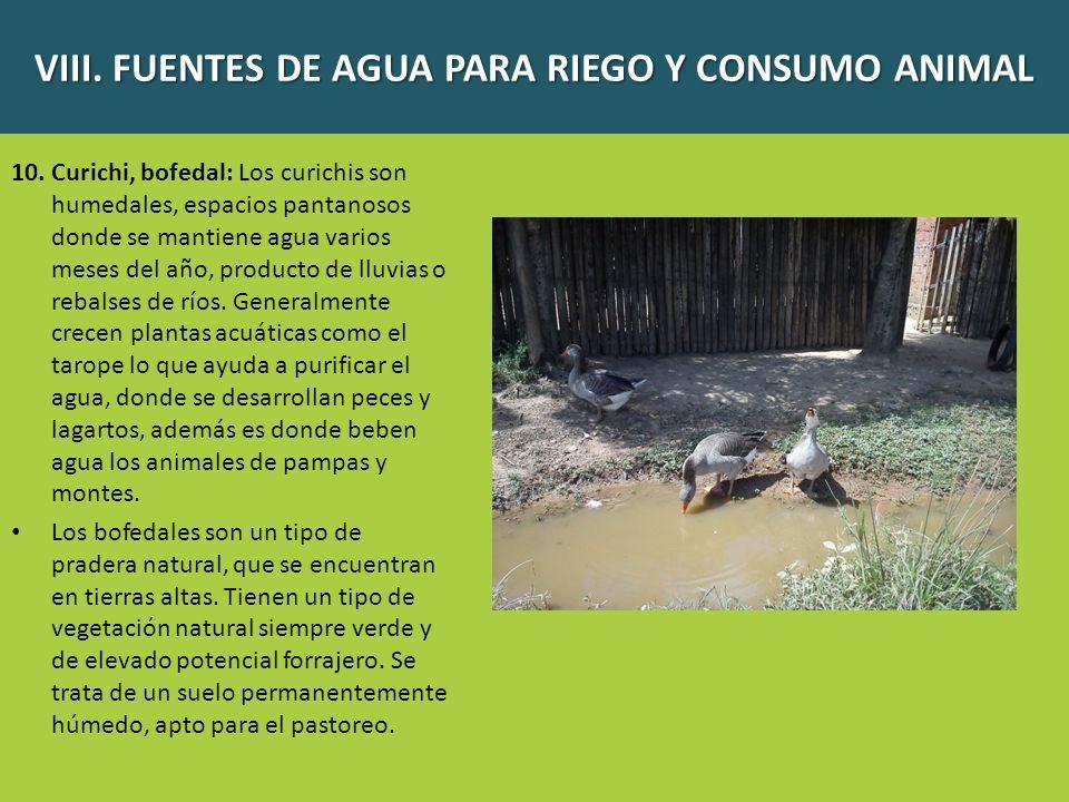 VIII. FUENTES DE AGUA PARA RIEGO Y CONSUMO ANIMAL