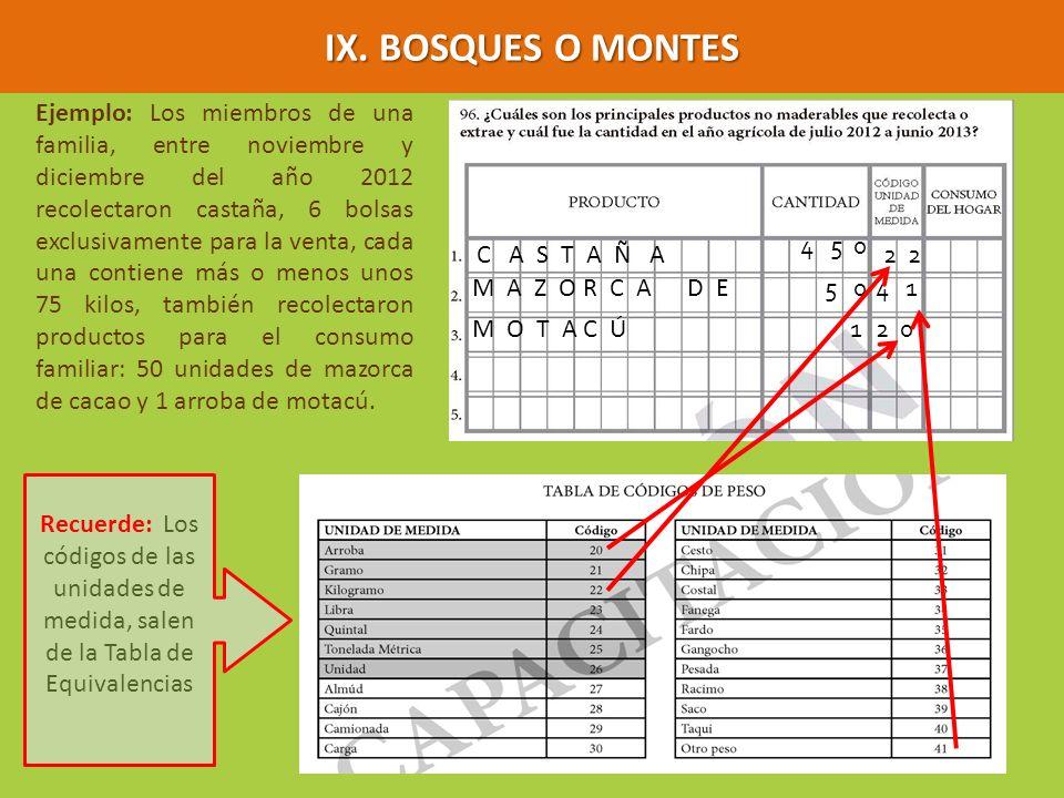IX. BOSQUES O MONTES
