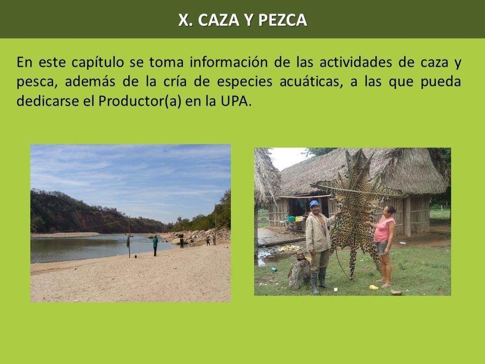 X. CAZA Y PEZCA