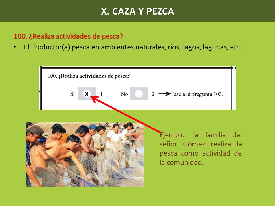 X. CAZA Y PEZCA 100. ¿Realiza actividades de pesca