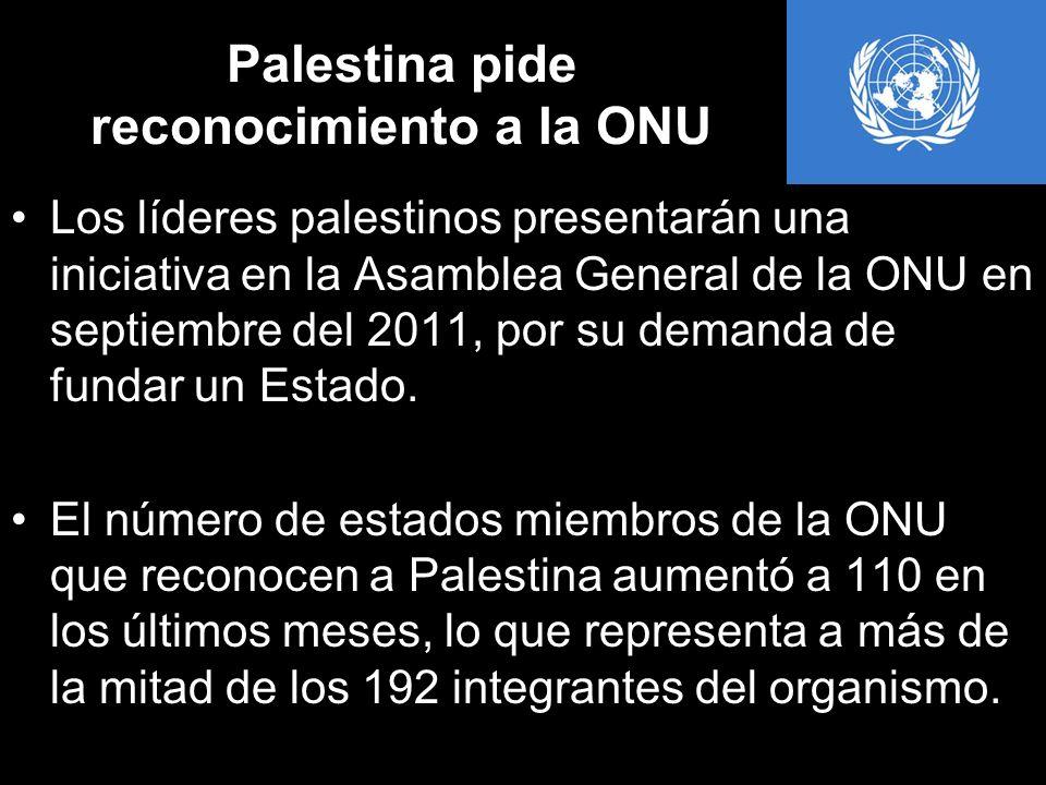 Palestina pide reconocimiento a la ONU