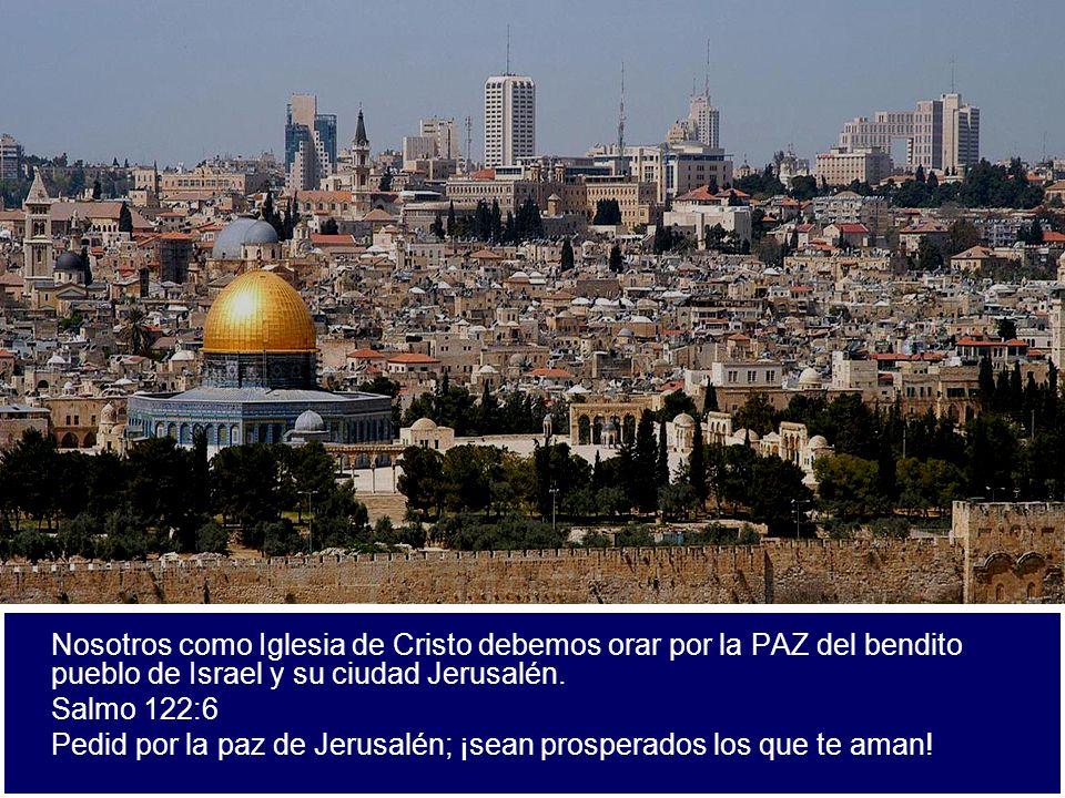 Pedid por la paz de Jerusalén; ¡sean prosperados los que te aman!