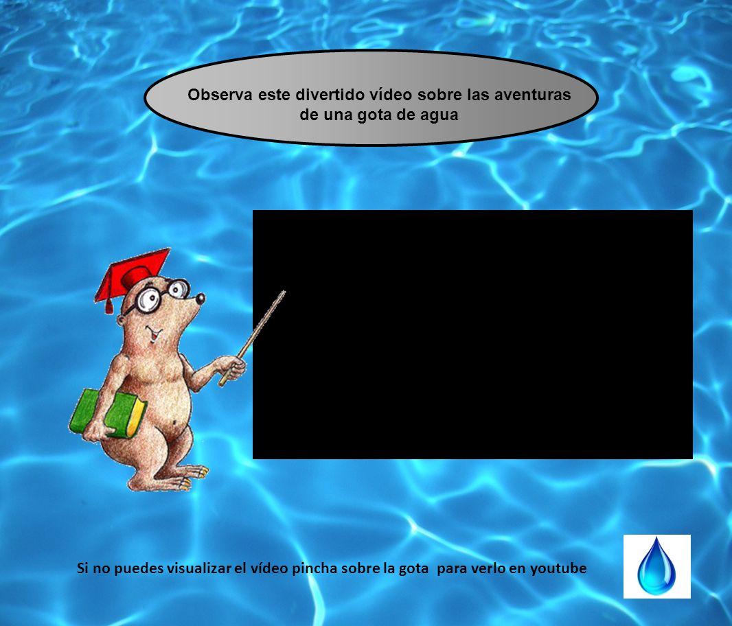 Observa este divertido vídeo sobre las aventuras de una gota de agua