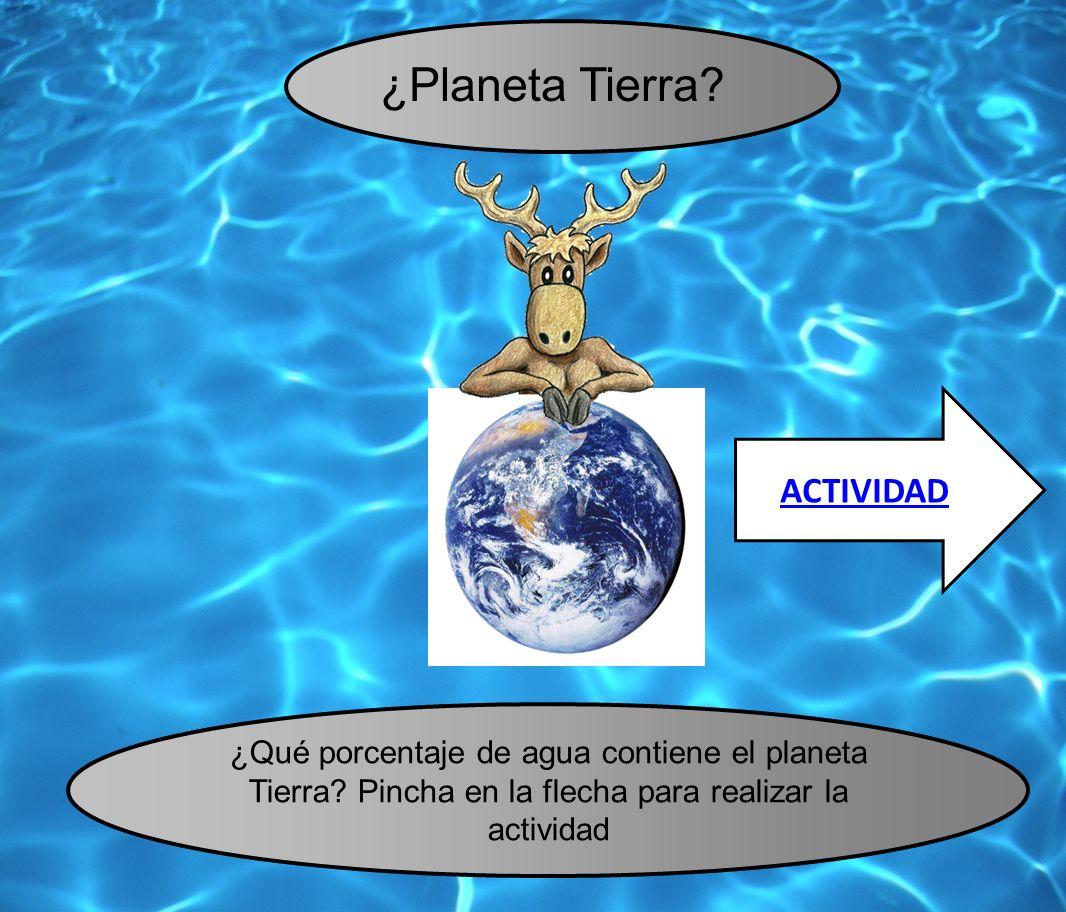 ¿Planeta Tierra ACTIVIDAD