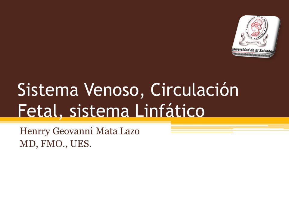 Sistema Venoso, Circulación Fetal, sistema Linfático
