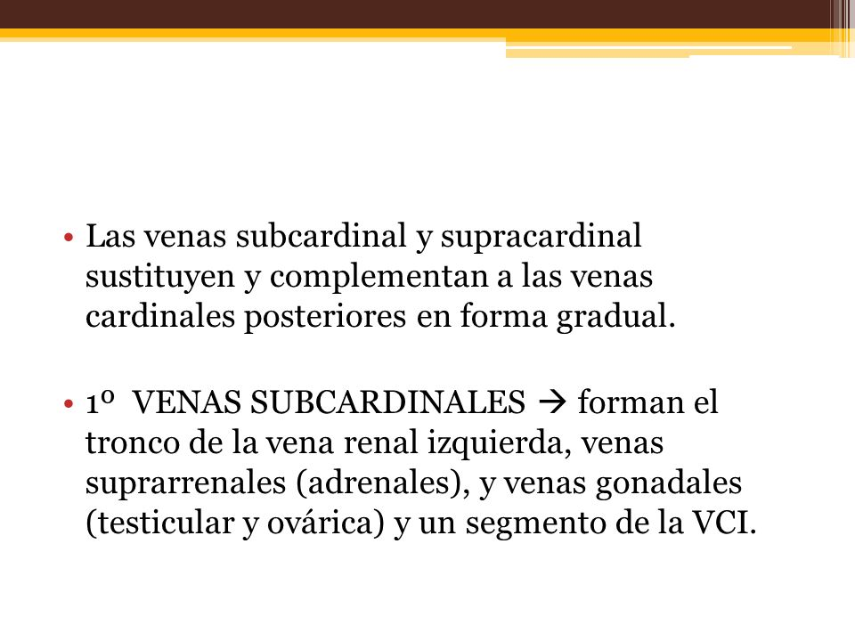 Las venas subcardinal y supracardinal sustituyen y complementan a las venas cardinales posteriores en forma gradual.