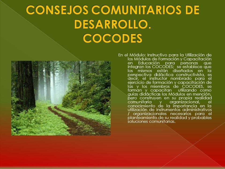 CONSEJOS COMUNITARIOS DE DESARROLLO. COCODES