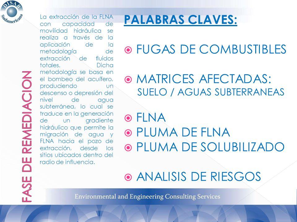PALABRAS CLAVES: FUGAS DE COMBUSTIBLES MATRICES AFECTADAS: FLNA