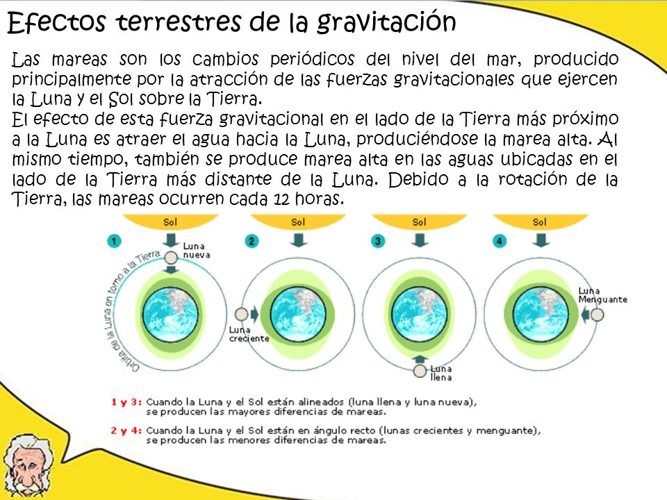 Efectos terrestres de la gravitación