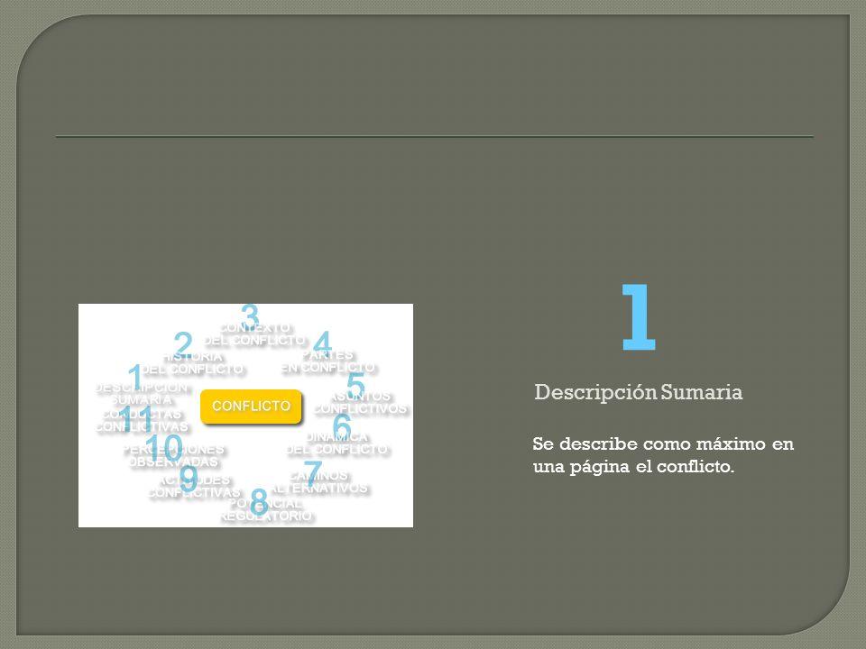 1 Descripción Sumaria Se describe como máximo en una página el conflicto.