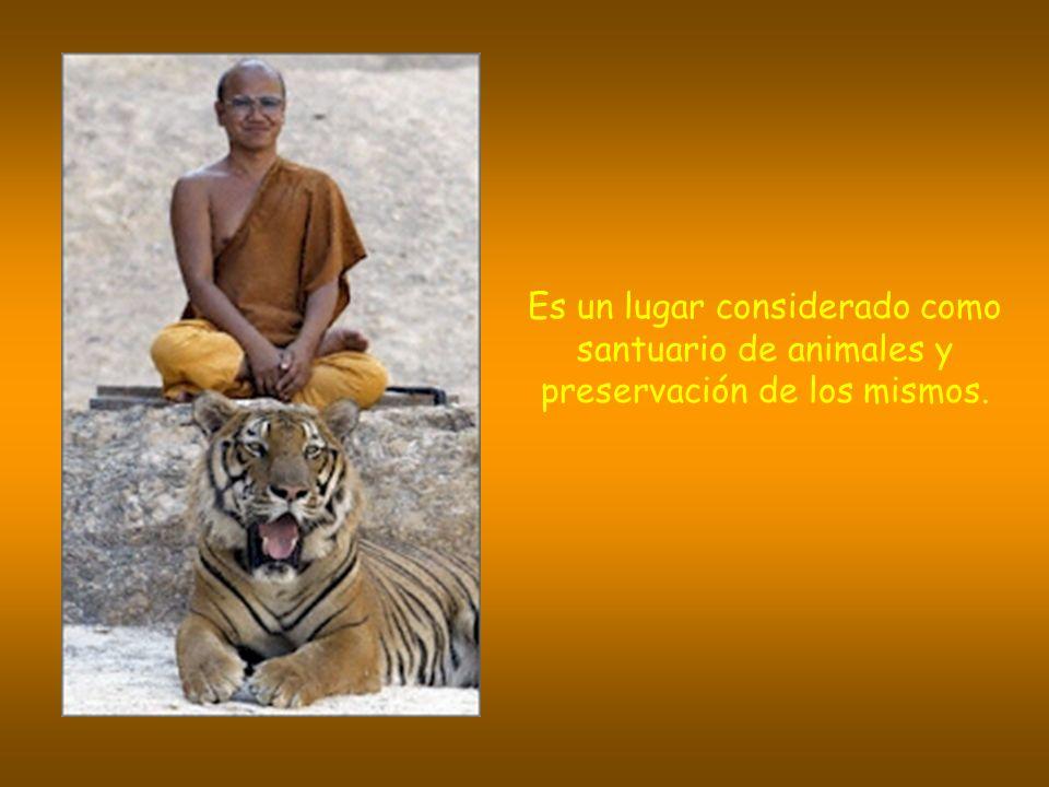 Es un lugar considerado como santuario de animales y preservación de los mismos.