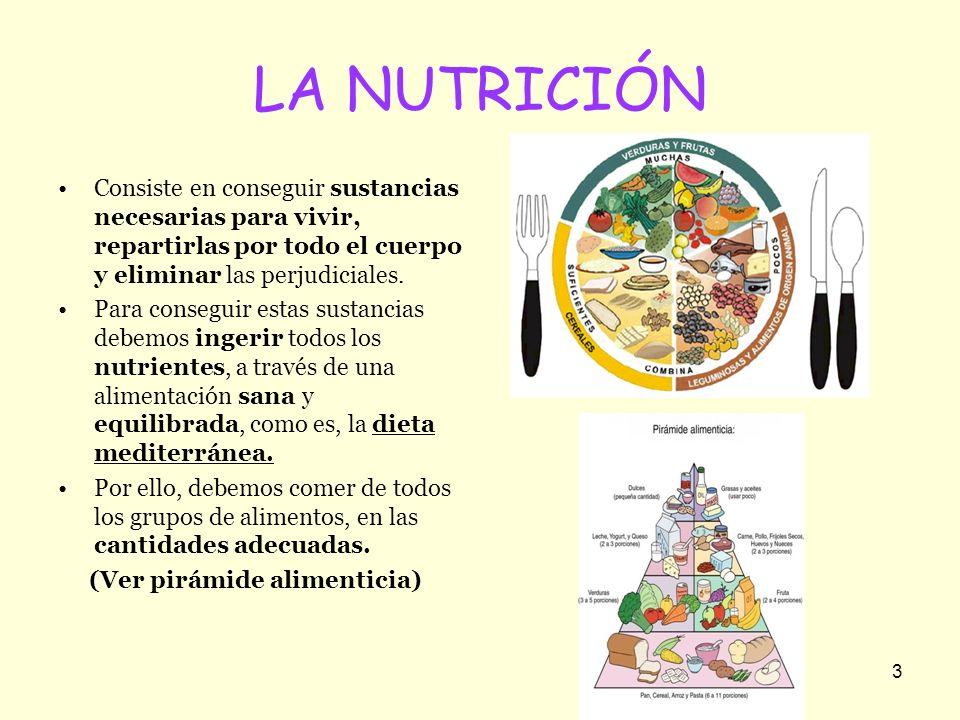 LA NUTRICIÓN Consiste en conseguir sustancias necesarias para vivir, repartirlas por todo el cuerpo y eliminar las perjudiciales.