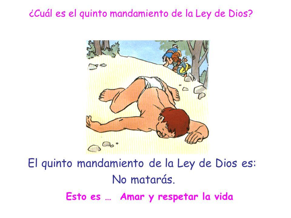 El quinto mandamiento de la Ley de Dios es: No matarás.