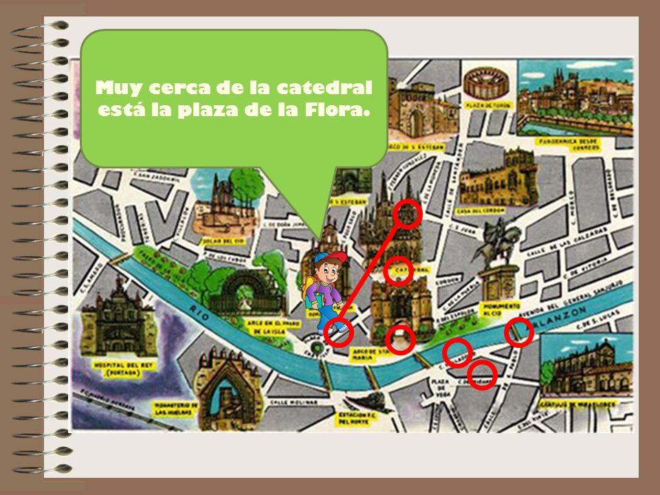 Muy cerca de la catedral está la plaza de la Flora.