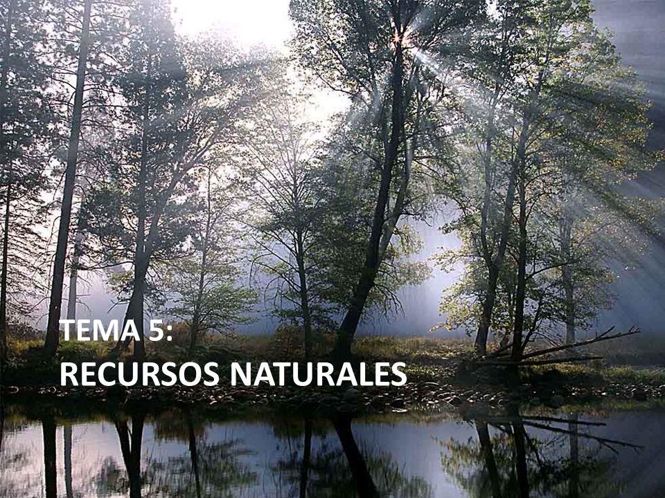 TEMA 5: RECURSOS NATURALES
