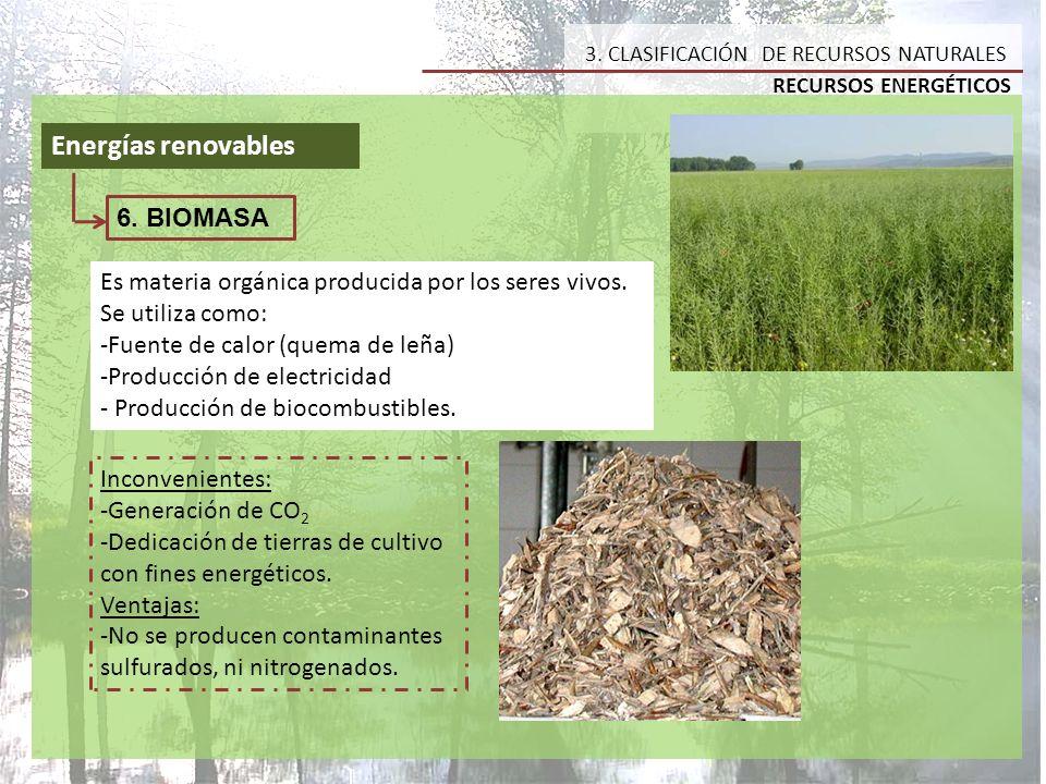Energías renovables 6. BIOMASA