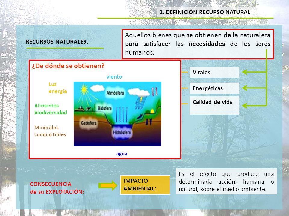 1. DEFINICIÓN RECURSO NATURAL