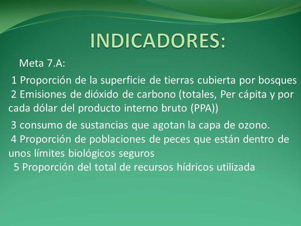 INDICADORES: Meta 7.A: