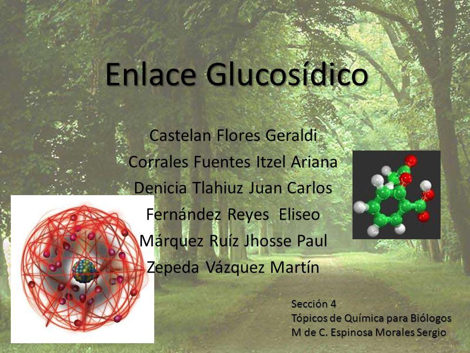 Enlace Glucosídico Castelan Flores Geraldi