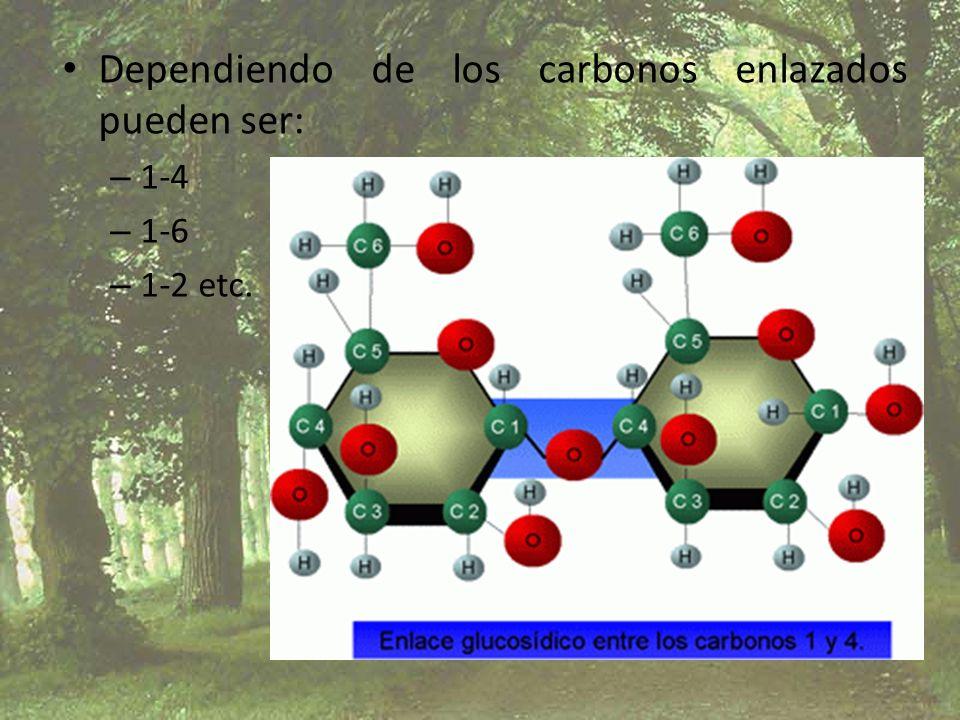 Dependiendo de los carbonos enlazados pueden ser: