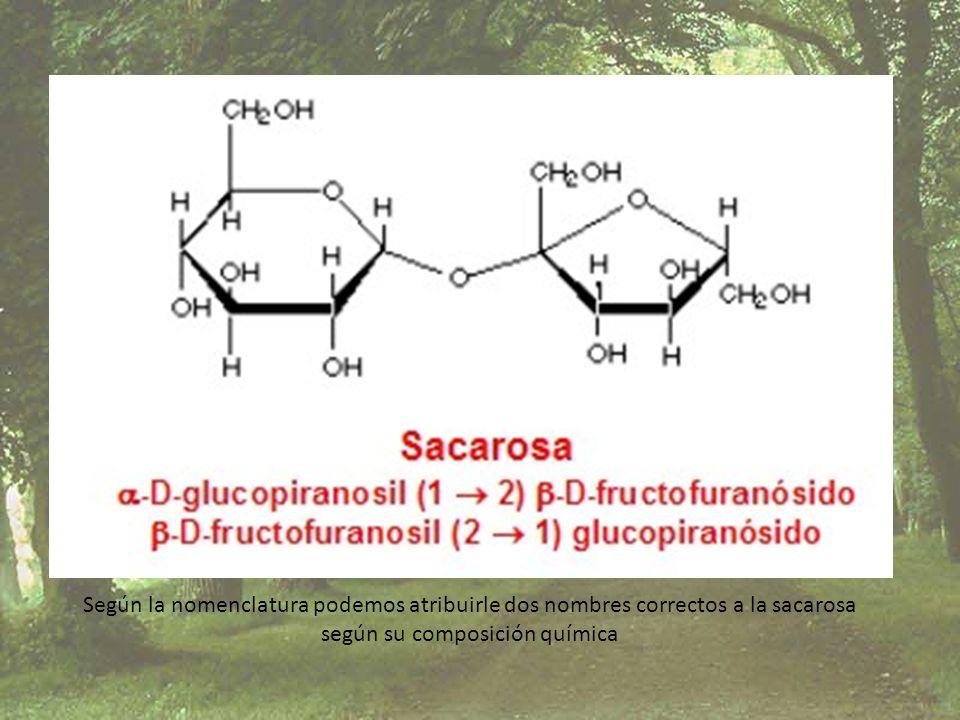 según su composición química