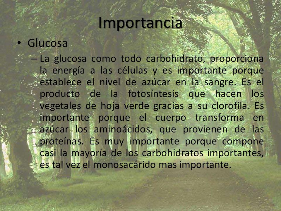 Importancia Glucosa.
