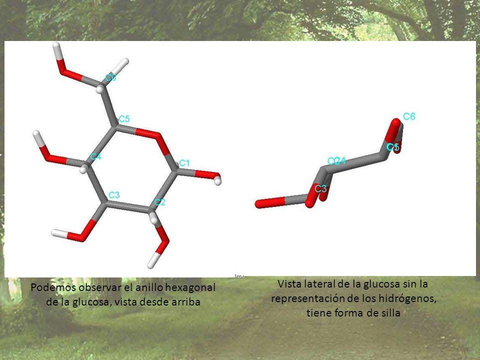 Vista lateral de la glucosa sin la representación de los hidrógenos,