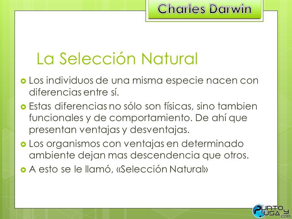 La Selección Natural Charles Darwin