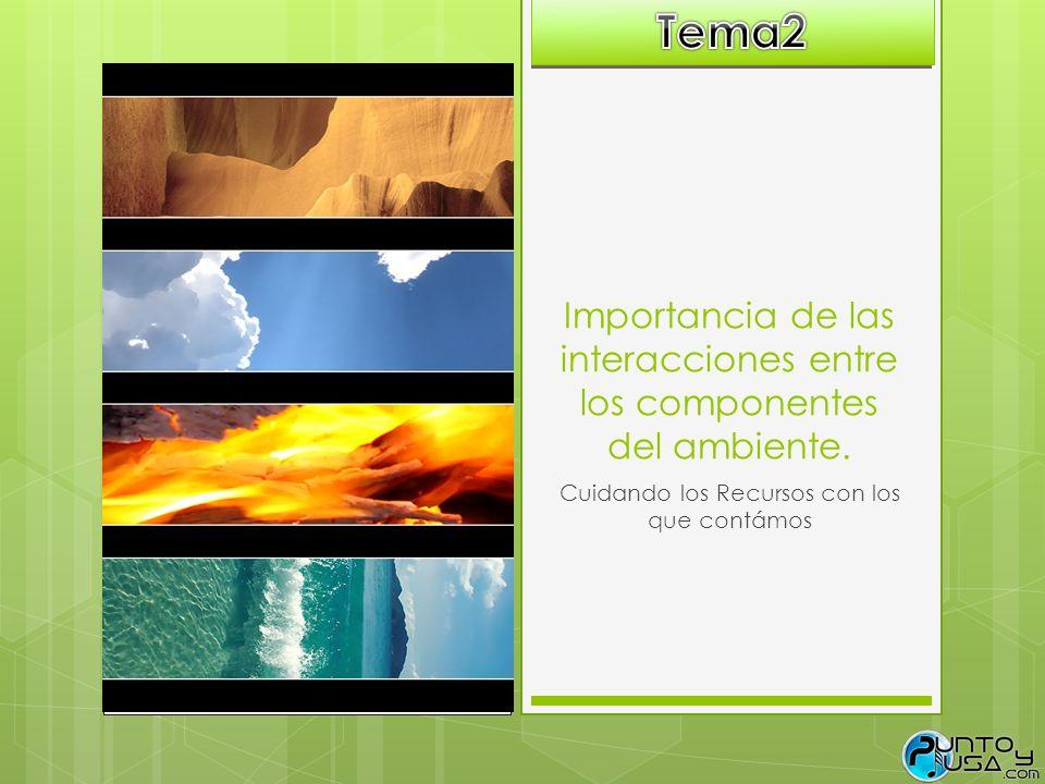 Importancia de las interacciones entre los componentes del ambiente.