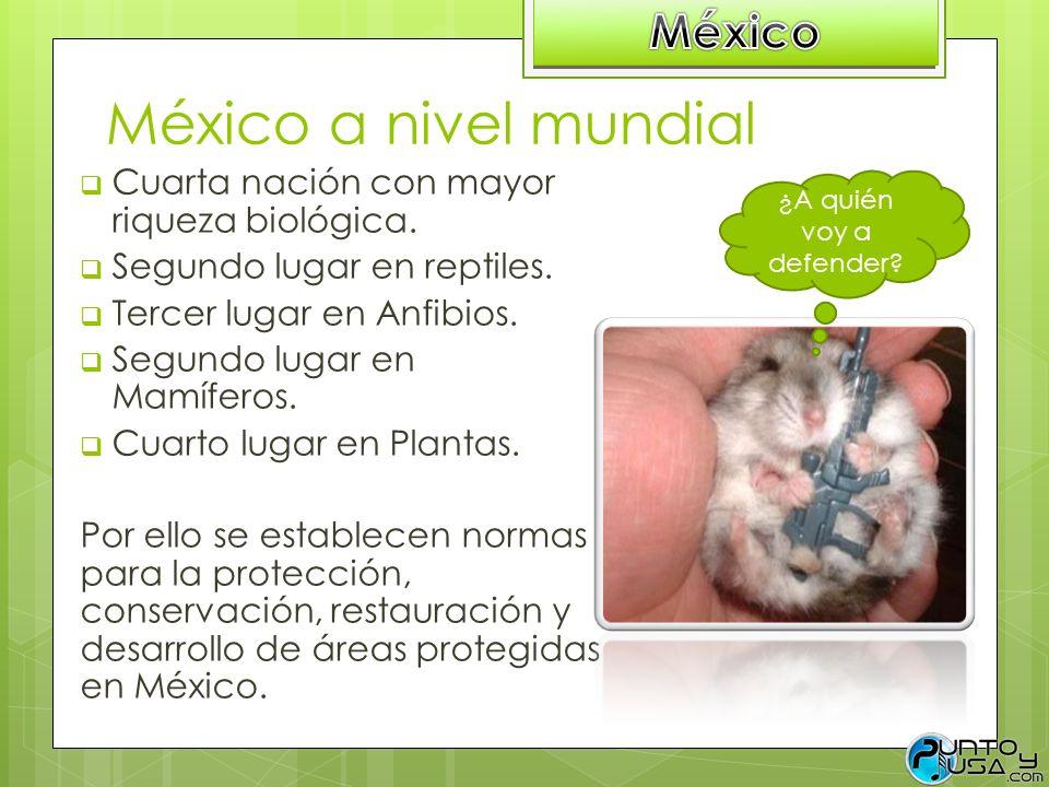 México a nivel mundial México
