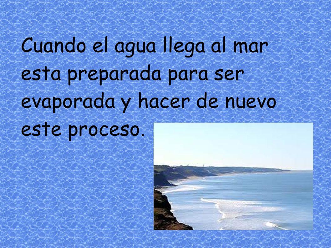 Cuando el agua llega al mar esta preparada para ser evaporada y hacer de nuevo este proceso.