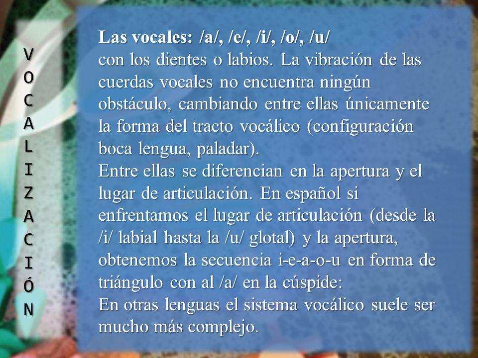 VOCALIZACIÓN Las vocales: /a/, /e/, /i/, /o/, /u/