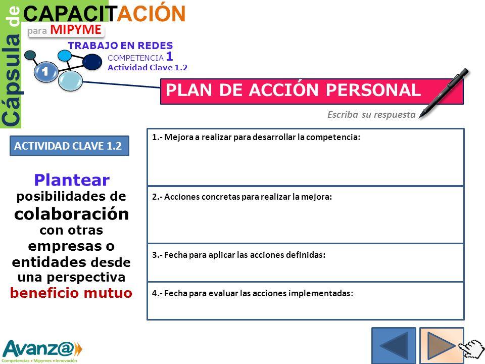 Cápsula de CAPACITACIÓN PLAN DE ACCIÓN PERSONAL