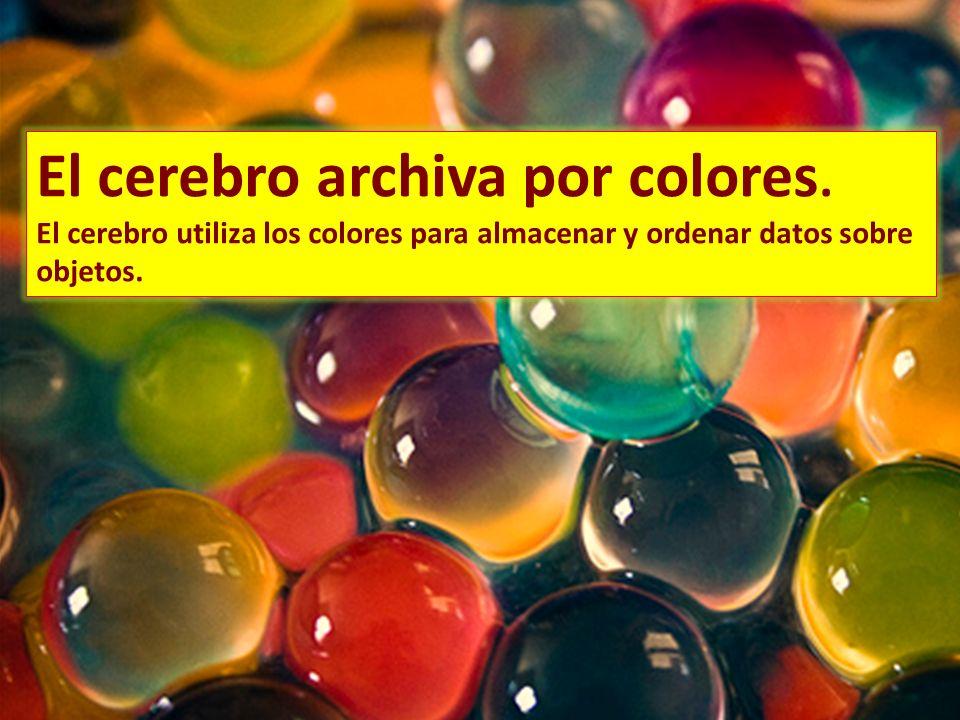 El cerebro archiva por colores.