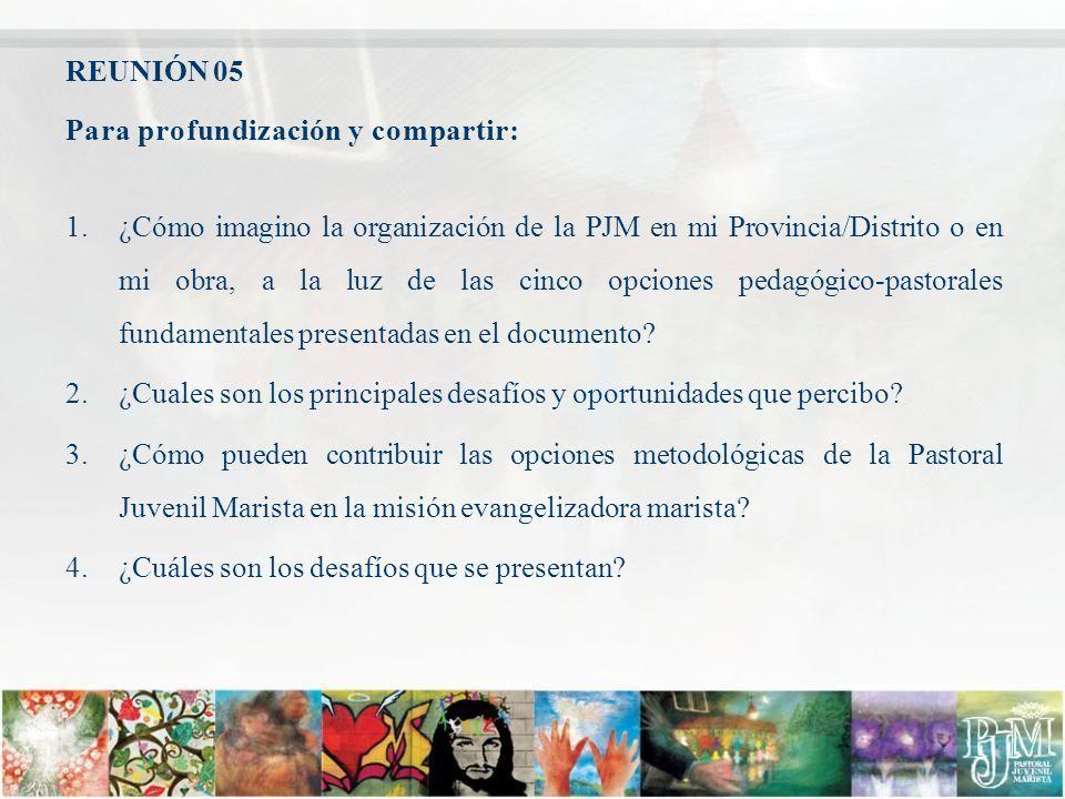 REUNIÓN 05 Para profundización y compartir: