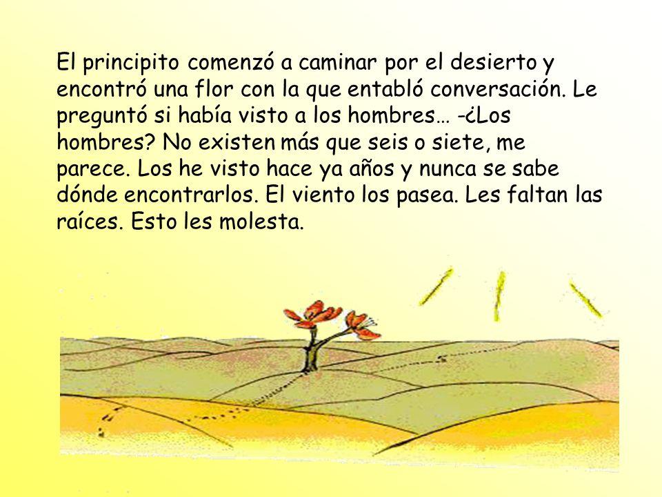 El principito comenzó a caminar por el desierto y encontró una flor con la que entabló conversación.